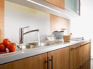 Focus S Edelstahl-Küchenarmatur von Hansgrohe