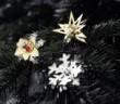 Weihnachtsschmuck von Menu Bild: Menu
