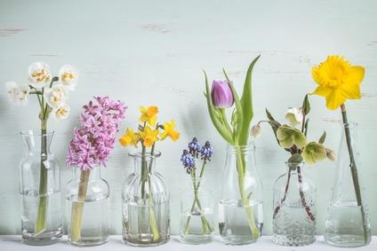 Frühlingsblumen in kleinen Vasen