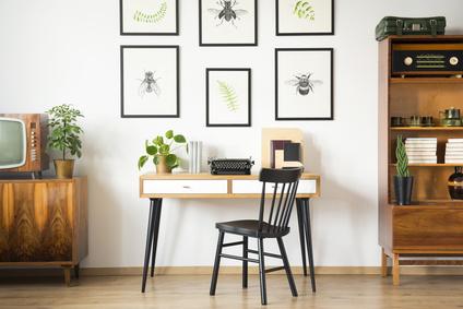 Bilder von Insekten an der Wand